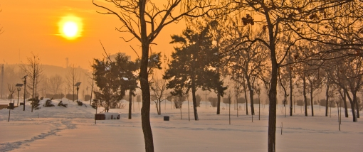 Iarna in Parcul Izvor