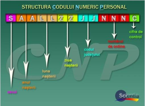 structura cnp-ului